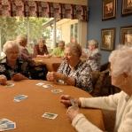 enjoying a game of cards, 2